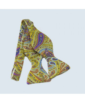 Fine Silk Ornate Paisley Design Self-tie Bow tie in Light Green