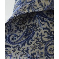 Fine Silk Chinese Dragon Paisley Pattern Hank in Light Grey